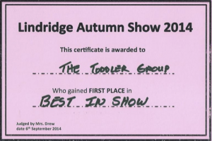 todders-best-in-show-2014